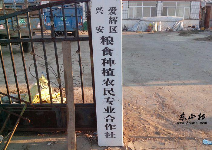 东山村合作社的门口